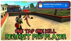 Regedit Vip FF Pro 1